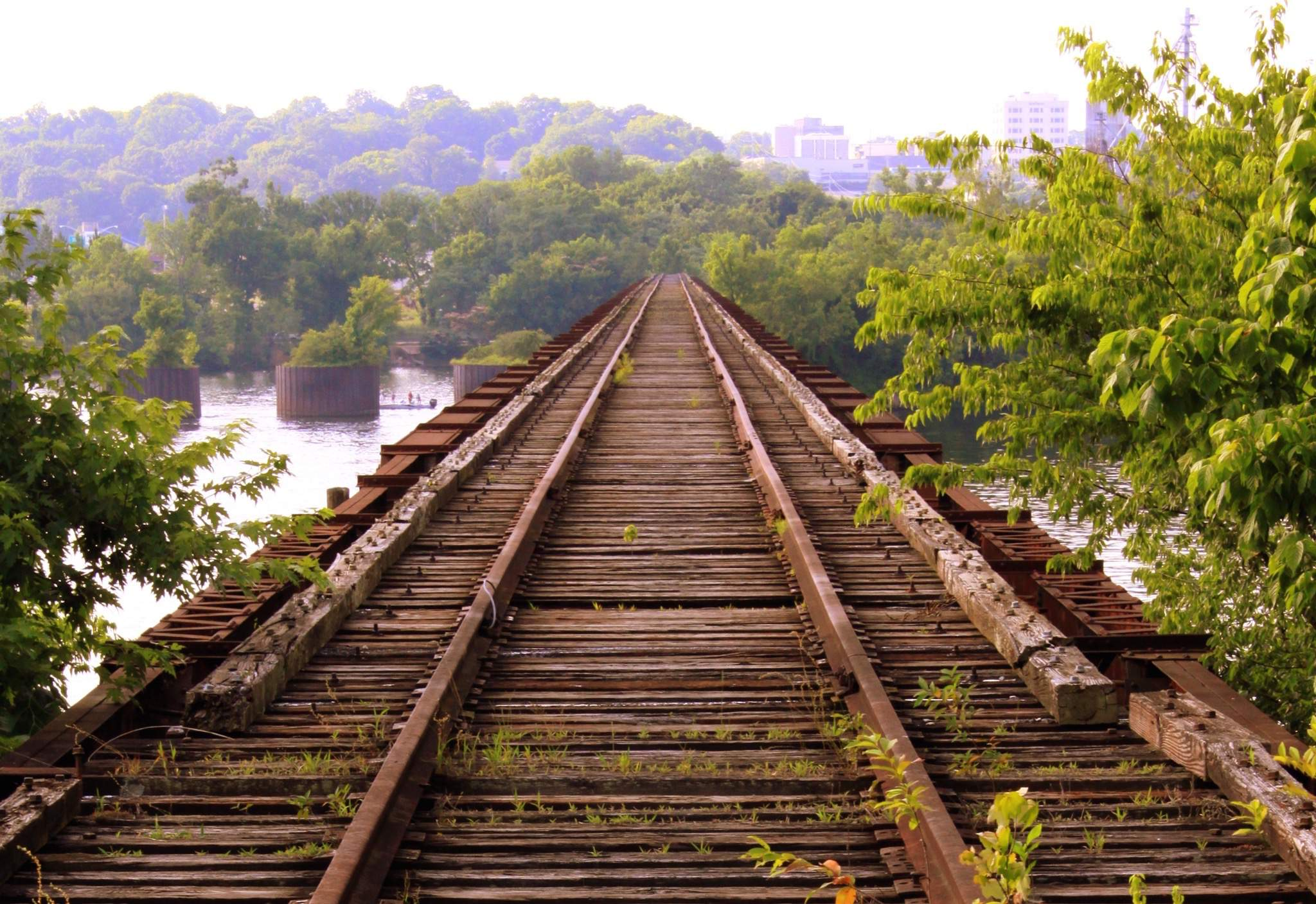 The Bridge to What You Want is Littered with Failure. Cross It.